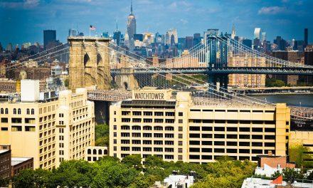 Прогулка по Бруклин-Хайтс – Свидетели