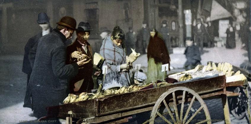 Banana Cart, New York, New York - Year1902