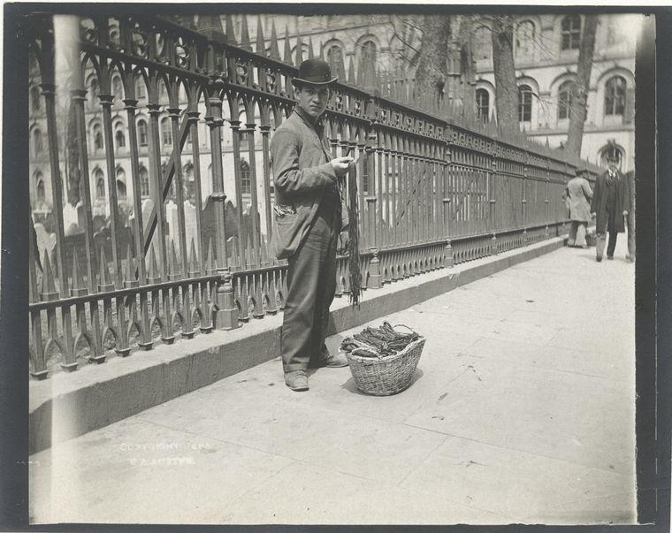 Peddler, shoe strings. (1896)