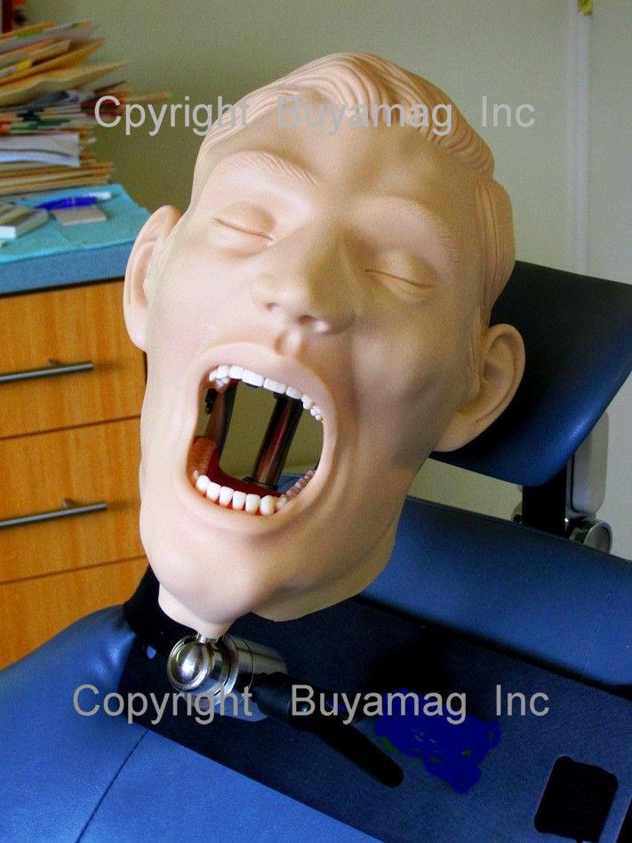 dental8