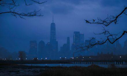 Нью-Йоркская солянка – LXXXI