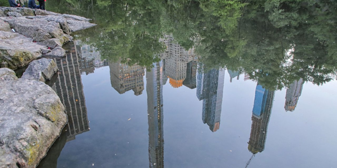 На берегу нью-йоркского пруда.