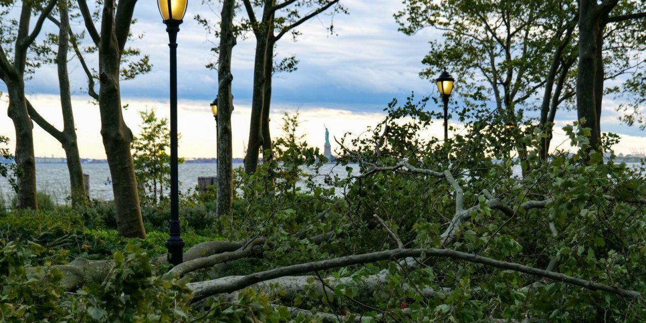 Думал выложу фотки и видео сегодняшнего урагана, а в итоге сижу в фейсбуке при свечах и заряд …